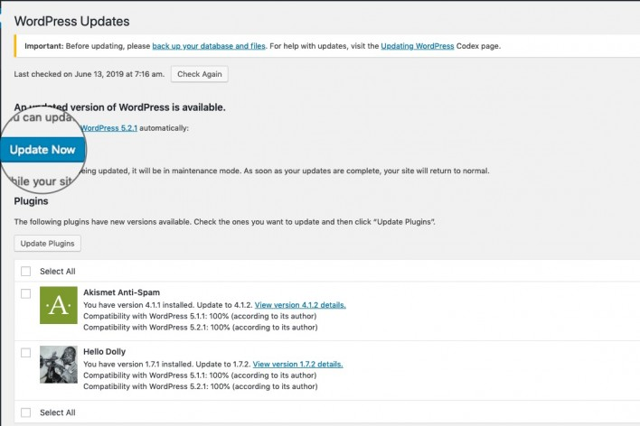 WordPress Update Now!